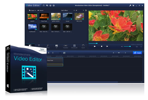 Leawoo video editor